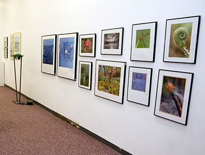 Signature Gallery 2007